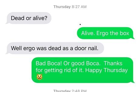 Boca mouse text